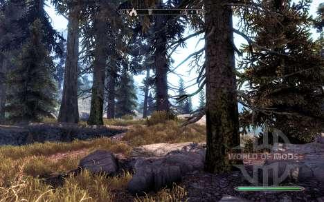 Realista pinho para Skyrim quinto tela