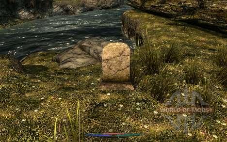 Limpeza de cadáveres para Skyrim