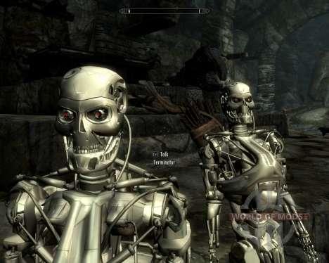 Exterminadores de corrida para Skyrim sexta tela