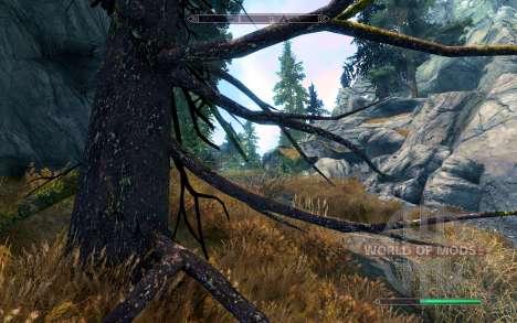 Realista pinho para Skyrim segunda tela