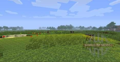 Zyins HUD para Minecraft