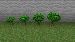Arbustos de Bush-baga baga para Minecraft