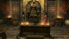 O Companheiro De Erenia Cetonia para Skyrim