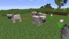 Pug Life para Minecraft