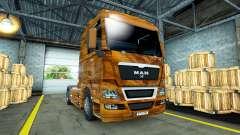 Pele Madeira de Oliveira, sobre o caminhão do HOMEM para Euro Truck Simulator 2