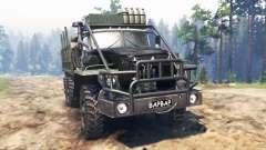 Ural-4320-30 [bárbara] para Spin Tires