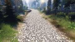 Textura de cinza do asfalto com pedregulho branco para Spin Tires