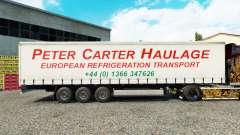 Pele de Peter Carter Transporte na cortina semi-reboque para Euro Truck Simulator 2