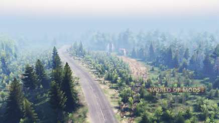 Mixed Forest 2 para Spin Tires