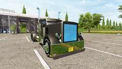 Peterbilt 388 custom