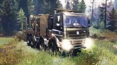 Tatra Phoenix T 158 8x8 v10.0
