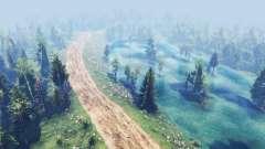 Estrada da floresta para Spin Tires