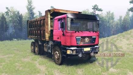 Shaanxi Shacman F2000 para Spin Tires
