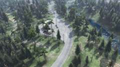 Floresta de trânsito para Spin Tires