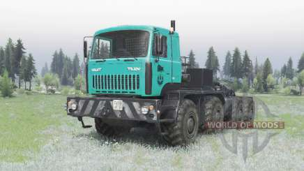MZKT 7429-010 turquesa para Spin Tires