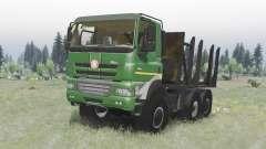 Tatra Phoenix T158-8P5 6x6 2011 v1.2 para Spin Tires