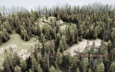 Trabalho na floresta para Spintires MudRunner