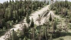 Trabalho na floresta