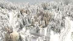 Snow Test 6