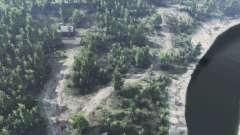 Floresta decídua