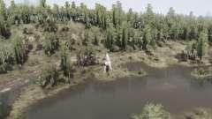 Floresta decídua v1.1 para MudRunner