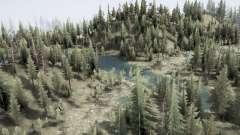 Floresta amazonica para MudRunner