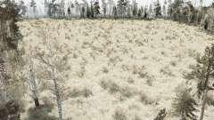 The Forest Marsh para MudRunner