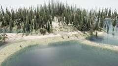 Floresta inundada 2 para MudRunner