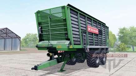 Bergmann ⱧTW 45 para Farming Simulator 2017