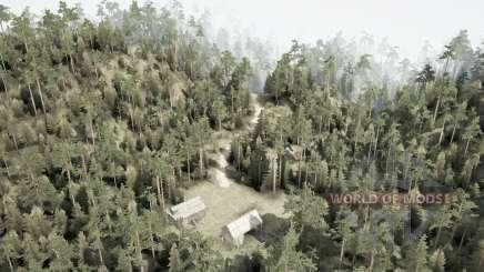 Montanhosa floresta para MudRunner