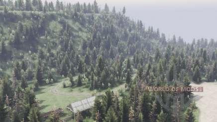 Em algum lugar na floresta para Spin Tires