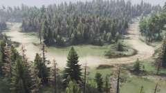 Vale floresta para Spin Tires