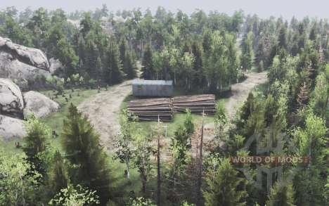 Floresta de montanha para Spin Tires