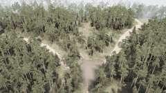 Floresta siberiana 3 - o caminho para o Baikal para MudRunner