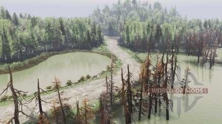 A selva para Spin Tires