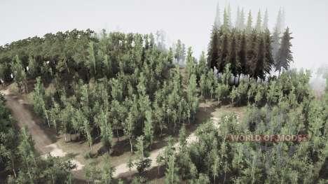 Birch grove para Spintires MudRunner