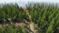 Caminho florestal para MudRunner