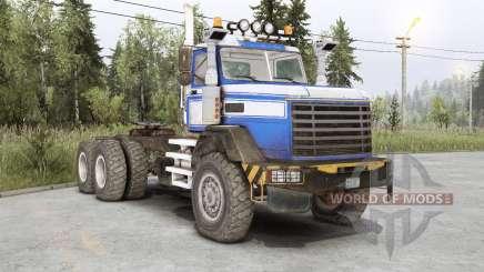 Royal BM-17 para Spin Tires