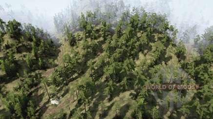 Estradas de montanha florestais para MudRunner