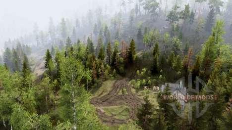 Colinas da Floresta para Spin Tires