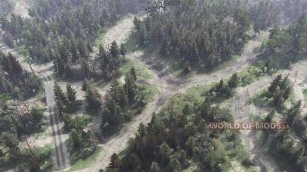 Planícies Florestais para Spin Tires