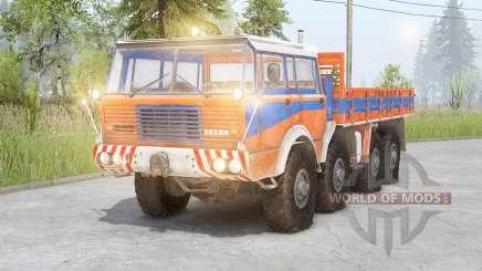 Tatra T813 8x8 para Spin Tires